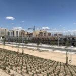 Así va la construcción de la Urbanización de viviendas unifamiliares más grande y equipada de El Cañaveral – Residencial Suertes de la Villa (Madrid) – Promoción privada